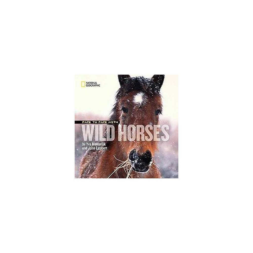 Face to Face With Wild Horses (Hardcover) (Yva Momatiuk)
