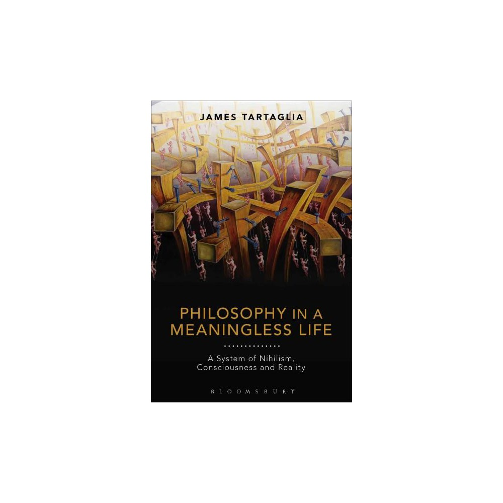 Philosophy in a Meaningless Life : A System of Nihilism, Consciousness and Reality (Hardcover) (James