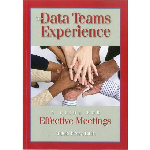 The Data Teams Experience - by  Angela Peery (Paperback) - image 1 of 1
