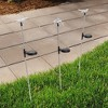 3pc Solar Outdoor LED Stake Butterfly, Hummingbird & Dragonfly Light - Pure Garden - image 3 of 4