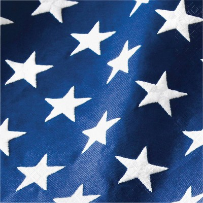 48ct Patriotic Flag Napkins