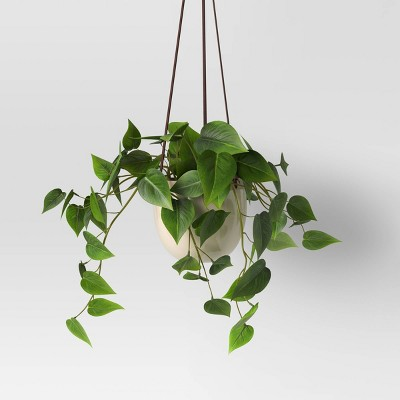 Wall Hanging Plant - Threshold™