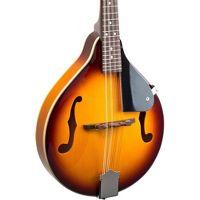 Savannah SA090-TSN A Model Mandolin Sunburst