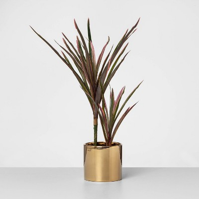 """17"""" x 10"""" Artificial Potted Dragon Tree Plant Purple/Green - Opalhouse™"""