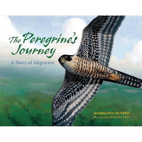 The Peregrine's Journey - by  Madeleine Dunphy (Paperback) - image 1 of 1