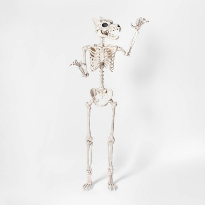 Lifesize Werewolf Skeleton Halloween Décor - Hyde & EEK! Boutique™