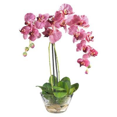 225 & Nearly Natural Phalaenopsis w/Glass Vase Silk Flower Arrangement