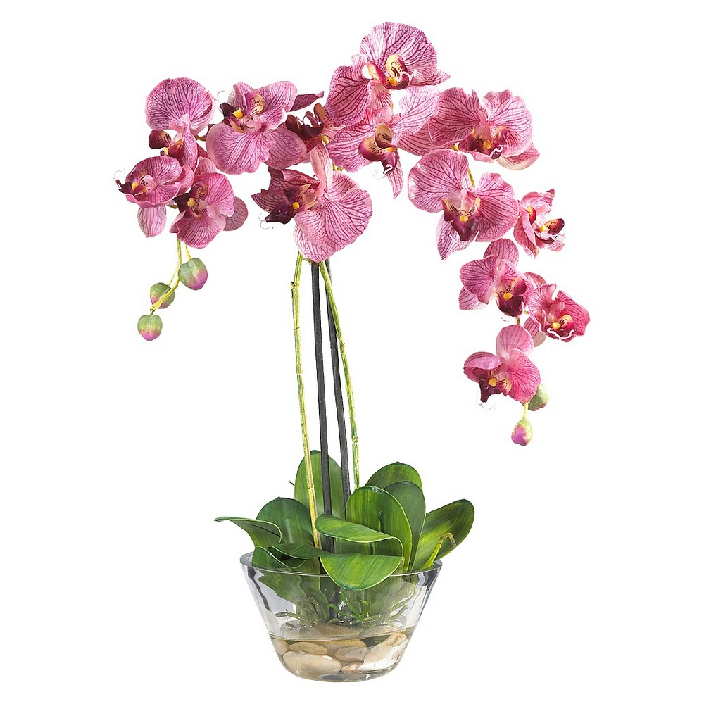 Nearly Natural Phalaenopsis w/Glass Vase Silk Flower Arrangement, Purple Standing twenty inches high, this Phalaenopsis with Glass Vase Silk Flower Arrangement from Nearly Natural is sure to make a spectacular impression. Featuring a mix of brightly hued petals that adds a simple yet elegant touch to your home or office decor. Perfect for a dining room centerpiece. The clear glass vase completes the entire arrangement to give your decor a simplistic and natural vibe. Size: 18IN. Color: Purple.
