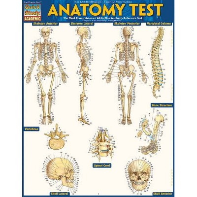 Anatomy Test Reference Guide (8.5 X 11) - by  Vincent Perez (Poster)
