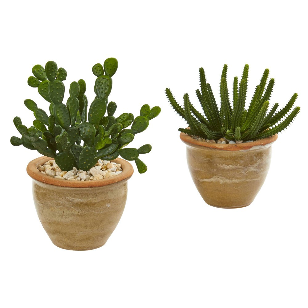 "Image of ""11"""" x 11"""" 2pc Artificial Cactus Succulent Plant in Ceramic Vase Set Green - Nearly Natural"""