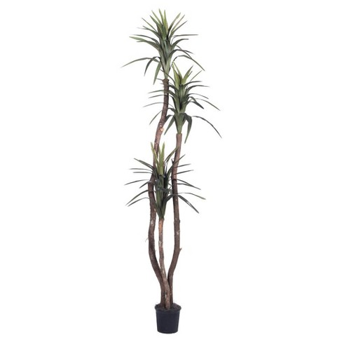 Artificial Marginata Deluxe (6.5ft) Green - Vickerman® - image 1 of 3