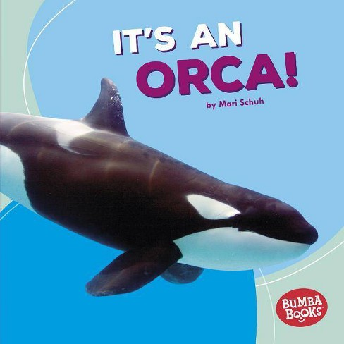 It's an Orca! - (Bumba Books (R) -- Polar Animals) by  Mari C Schuh (Hardcover) - image 1 of 1