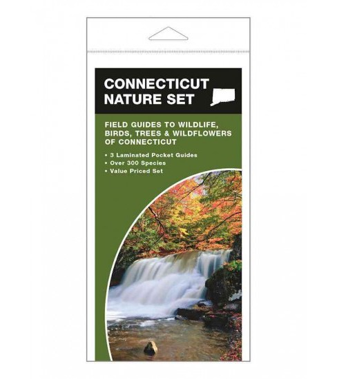 Connecticut Nature Set : Field Guides to Wildlife, Birds, Trees & Wildflowers of Connecticut (Paperback) - image 1 of 1