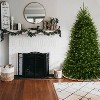 6.5ft National Christmas Tree Company Pre-Lit Dunhill Blue Fir Hinged Artificial Christmas Tree with Clear Lights - image 2 of 3