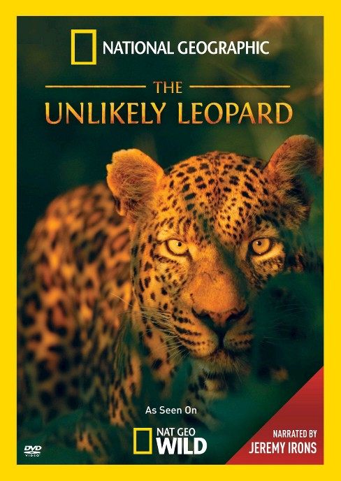 Unlikely leopard (DVD) - image 1 of 1