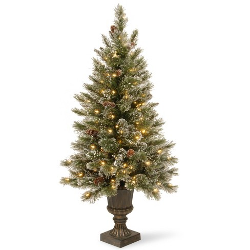 National Tree Company 5ft Glitter Bristle Artificial Pencil Tree 150ct Clear - image 1 of 1