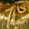 2ft National Christmas Tree Company Pre-Lit Majestic Fir Artificial Christmas Tree in Gold Cloth Bag with 35 Clear lights - image 2 of 4