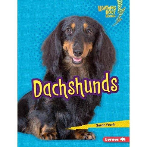 Dachshunds - (Lightning Bolt Books (R) -- Who's a Good Dog?) by  Sarah Frank (Hardcover) - image 1 of 1