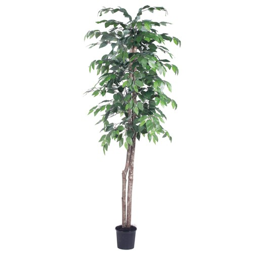 Artificial Ficus Tree 6