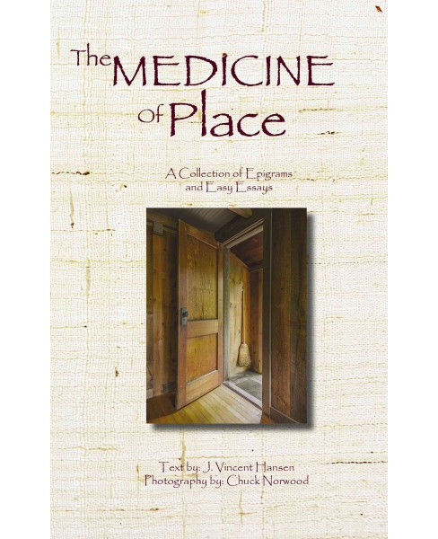 Medicine of Place : A Collection of Epigrams and Easy Essays (Paperback) (J. Vincent Hanson) - image 1 of 1