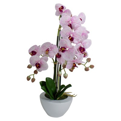 """Northlight 21"""" Pink and White Artificial Orchid Plant in a White Pot"""