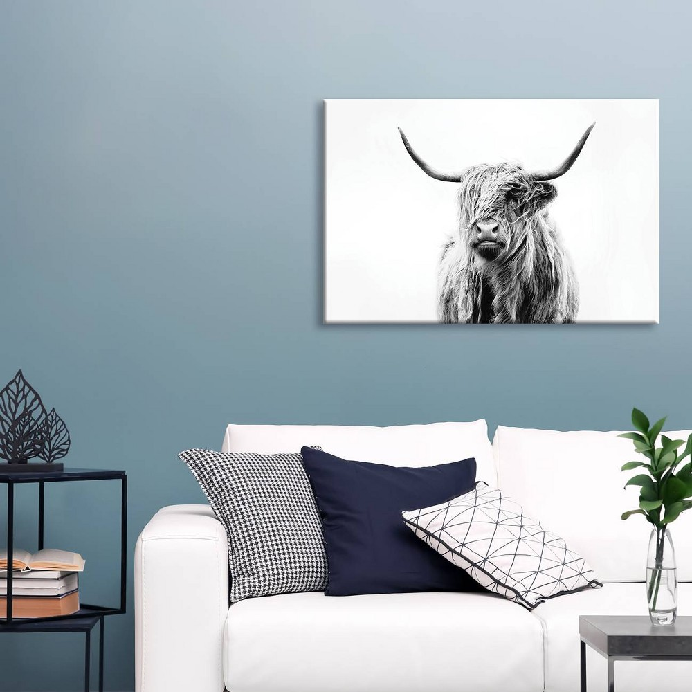 "Image of ""12"""" x 18"""" Portrait Of A Highland Cow by Dorit Fuhg Canvas Print Black/White - iCanvas, Size: 12"""" x 18"""""""