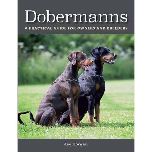 Dobermanns - by  Jay Horgan (Paperback) - image 1 of 1