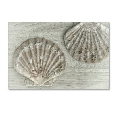 Two King Scallop Shells' by Cora Niele Ready to Hang Canvas Wall Art