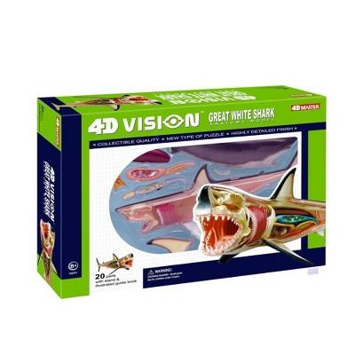 4D Master Great White Shark Anatomy 4-D Model