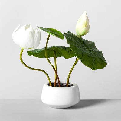 18 X 12 Artificial Lotus Plant In Pot Greenwhite Opalhouse