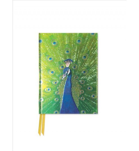 Peacock in Blue and Green Foiled Pocket Notebook (Hardcover) - image 1 of 1