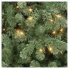 6ft Pre-lit Artificial Christmas Tree Alberta Spruce Clear Lights - Wondershop™ - image 2 of 4