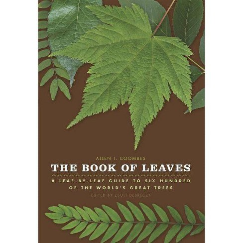The Book of Leaves - by  Allen J Coombes (Hardcover) - image 1 of 1