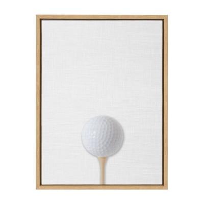 "18"" x 24"" Sylvie Color Golf Ball PortraitFramed Canvas Natural - DesignOvation"