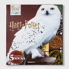 Women's Harry Potter Owl 15 Days of Socks Advent Calendar - Assorted Colors One Size - image 2 of 3