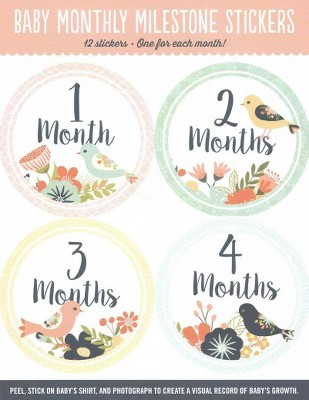 Baby's Monthly Milestone Stickers - Birds : 12 Stickers: One for Each Month! (Paperback)