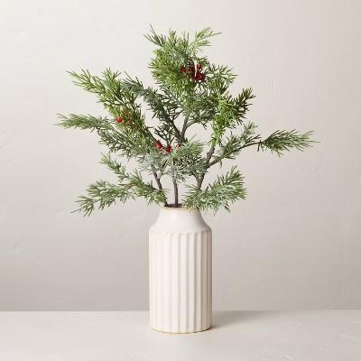 "14.5"" Faux Cedar & Berry Stems Ceramic Arrangement - Hearth & Hand™ with Magnolia"