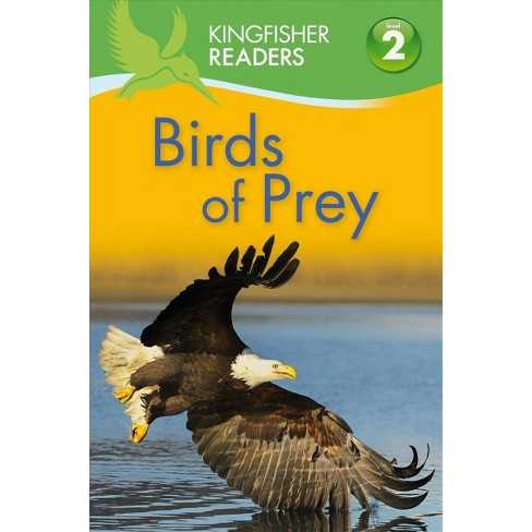 Birds of Prey - (Kingfisher Readers: Level 2) by  Claire Llewellyn (Paperback) - image 1 of 1