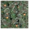 6ft Pre-lit Artificial Christmas Tree Virginia Pine Multicolored Lights - Wondershop™ - image 2 of 4