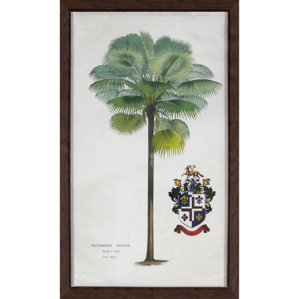 Vintage Framed Palm Tree Wall Art - Threshold, Multi-Colored