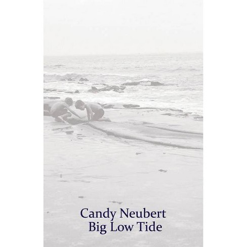 Big Low Tide - by  Candy Neubert (Paperback) - image 1 of 1