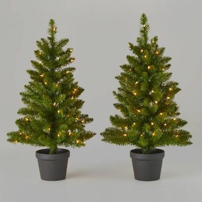 3ft/2pk Pre-Lit Alberta Spruce Potted Artificial Christmas Tree - Wondershop™