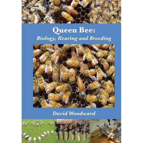 Queen Bee - by  David R Woodward (Paperback) - image 1 of 1