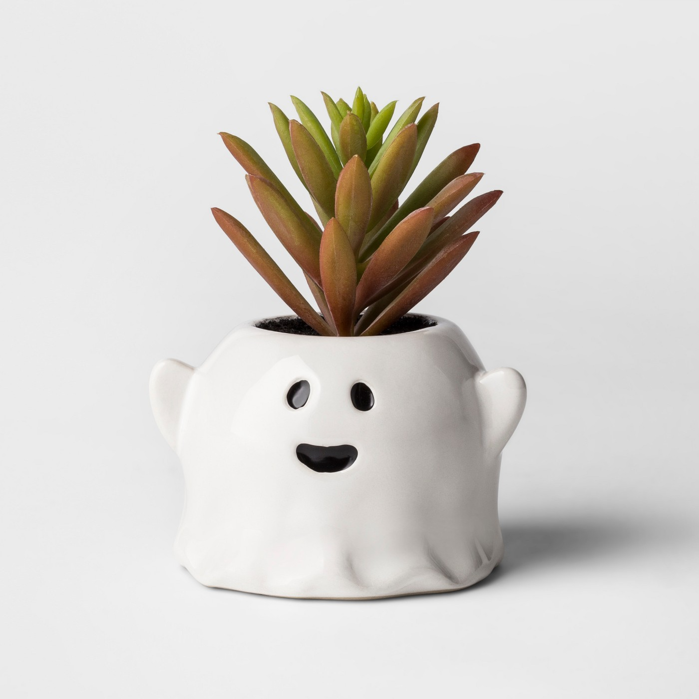 Hollow's Eve Ghost Succulent - Hyde and Eek! Boutique™ - image 1 of 2