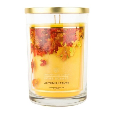 19oz Glass Jar 2-Wick Candle Autumn Leaves - Home Scents by Chesapeake Bay Candle