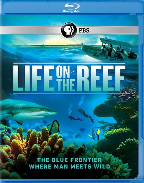 Life on the reef (Blu-ray) - image 1 of 1
