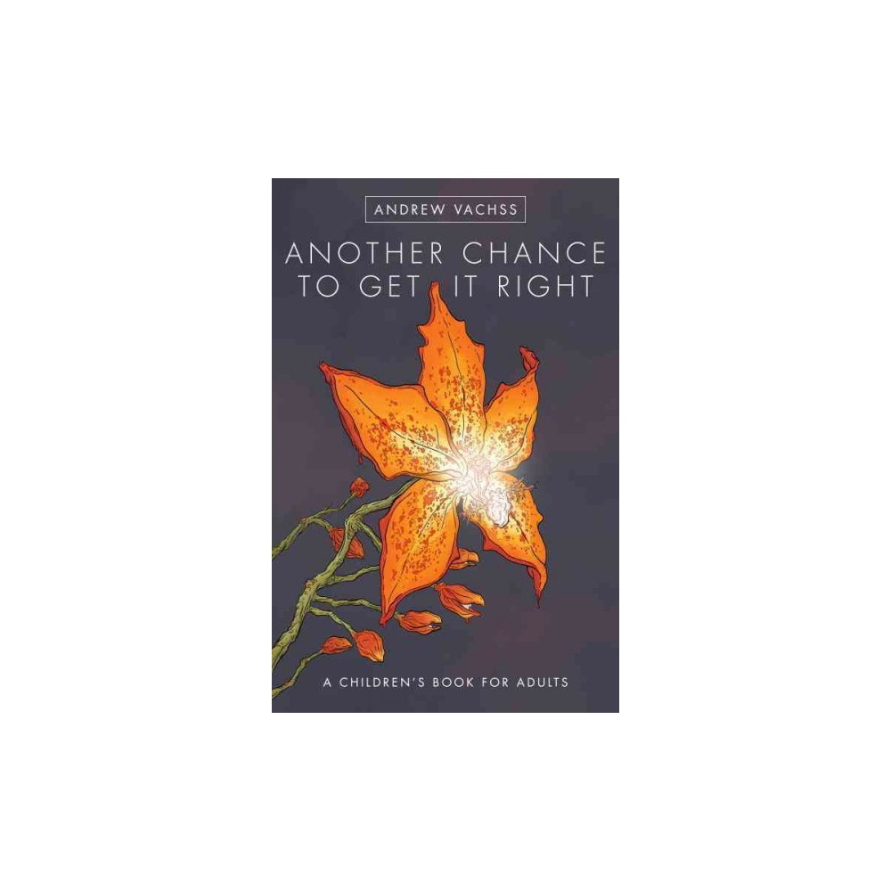 Another Chance to Get It Right : A Children's Book for Adults (Hardcover) (Andrew H. Vachss)