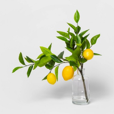 "16"" x 9"" Artificial Lemon Leaf Arrangement Yellow - Threshold™"