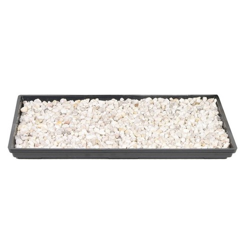 """11"""" Humidity Tray - Brussel's Bonsai - image 1 of 1"""