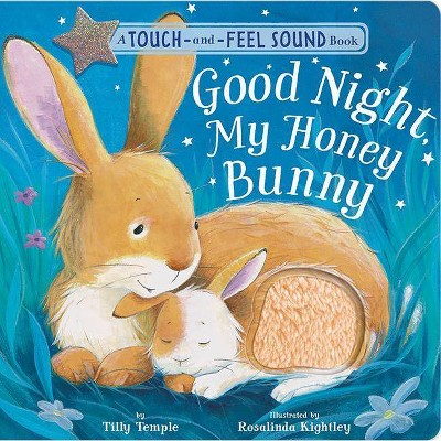 Good Night, My Honey Bunny - by Tilly Temple (Hardcover)